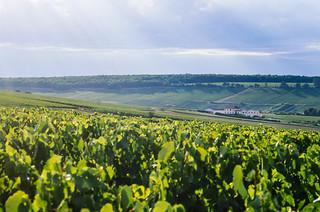 Balade gastronomique dans l'Yonne - Carte touristique de France