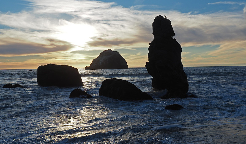 Shell Beach, Sonoma Coast State Park, CA, 7NOV15