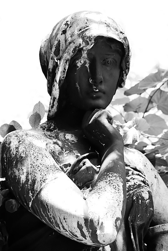 St. Marien, St. Nikolai Friedhof I_2015-11