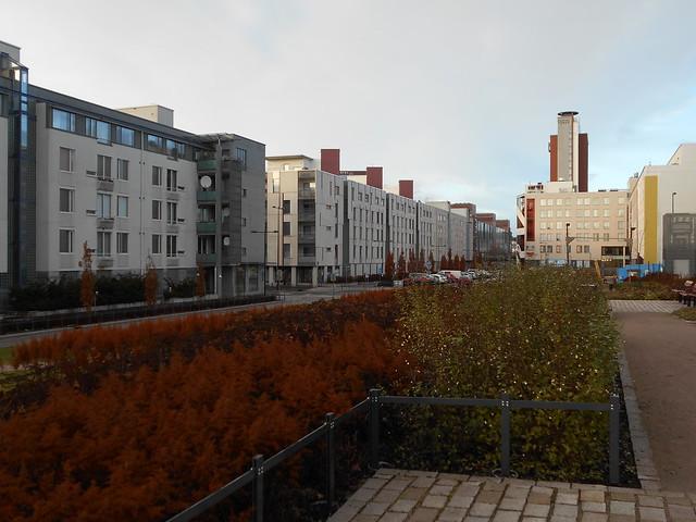 Viimeistä ruskaa ja talventörrötysestetiikkaa koristeistutuksessa, 10.11.2015 Espoo Leppävaaran keskusta