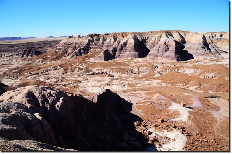 Blue Mesa Trail, Petrified Forest National Park 4