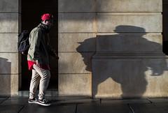 sumo shadow