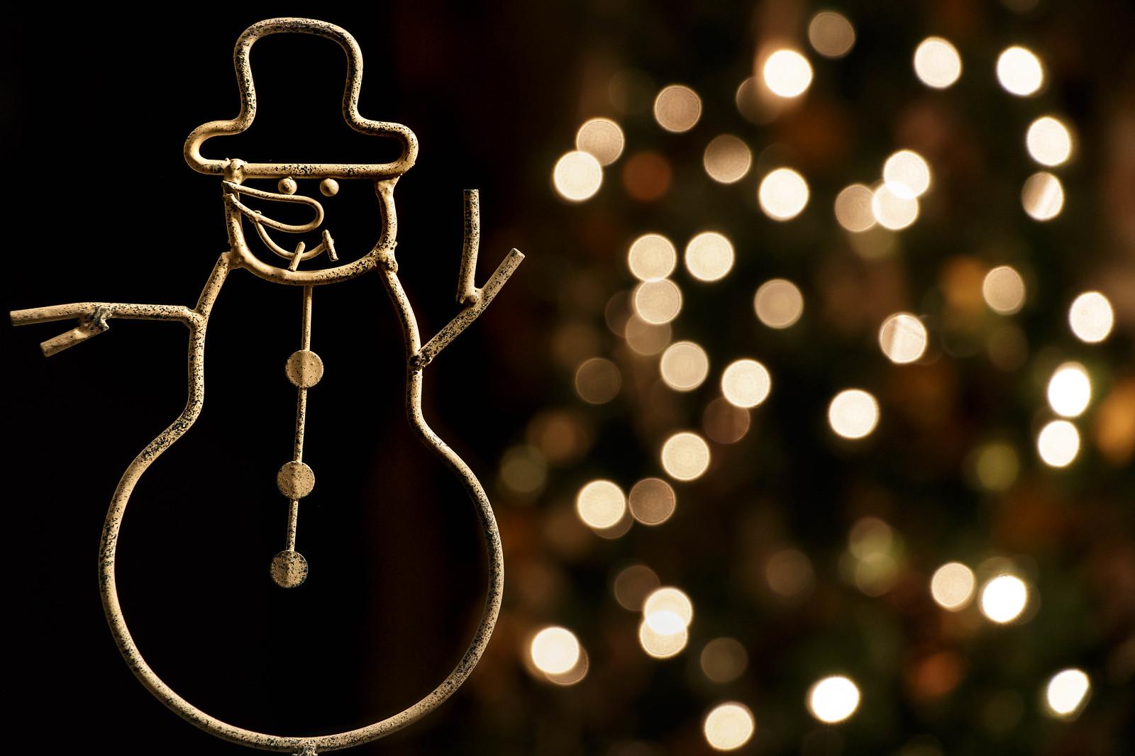wired snowman