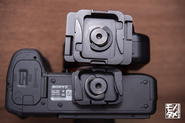 DSC09355LR-s.jpg