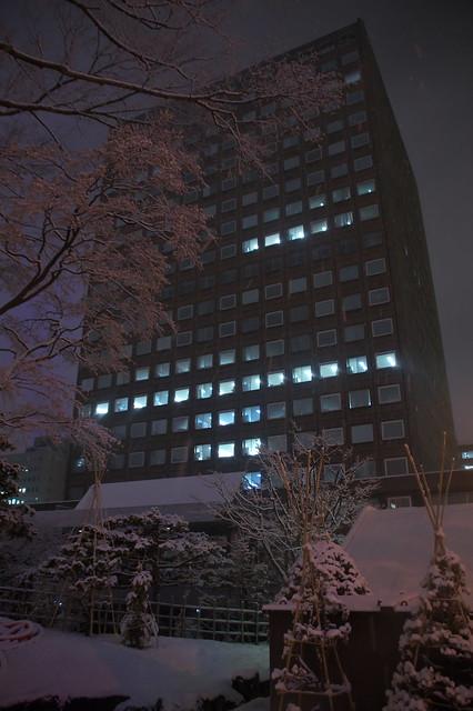 札幌市役所本庁舎 クリスマスツリー_04