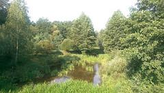 Distrito de Dyatlovo. Boroviki. Grodno (Bielorrusia).