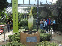 CBGSpike at Chicago Botanic Garden