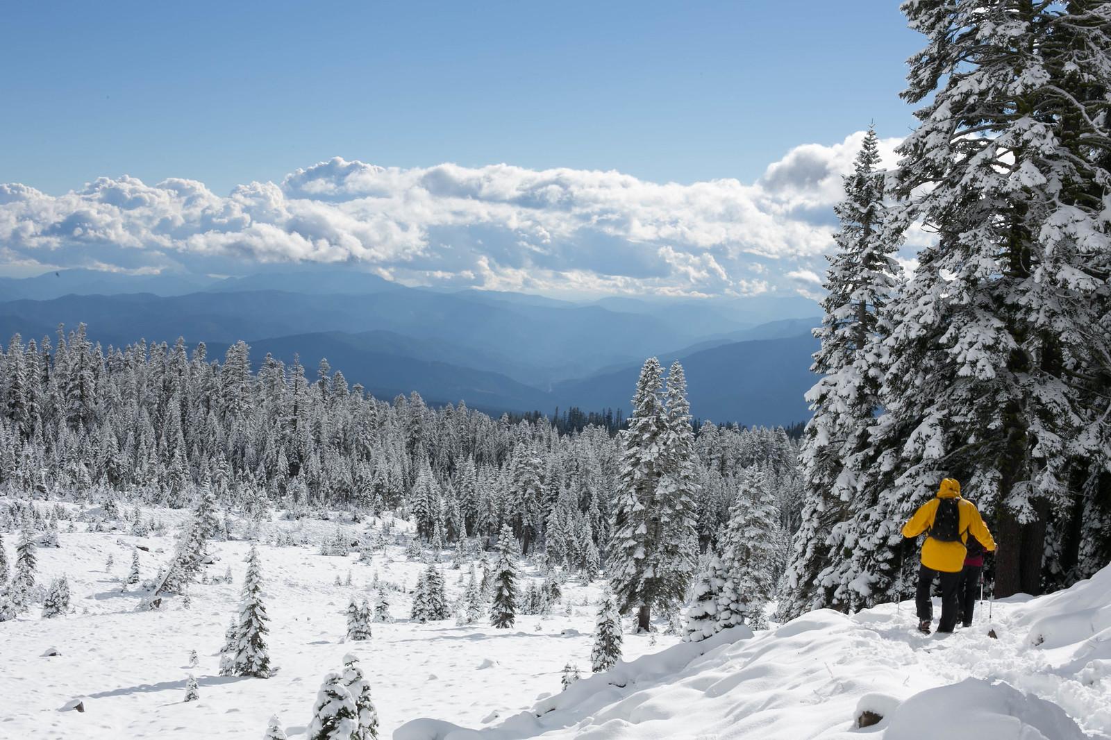 Snowy Ski Landscape