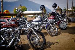 Berowra to Wondabyne ride-14
