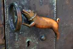 A piggish door handle