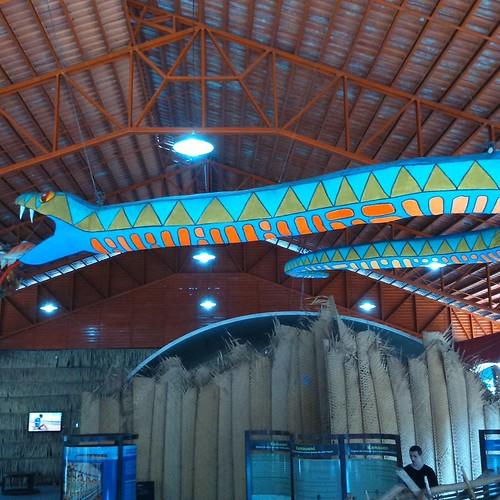 Infelizmente está foto não é minha (de @jlartes),  um local extraordinário em #Manaus! Perdi as fotos momentos depois.... #férias #Musa (