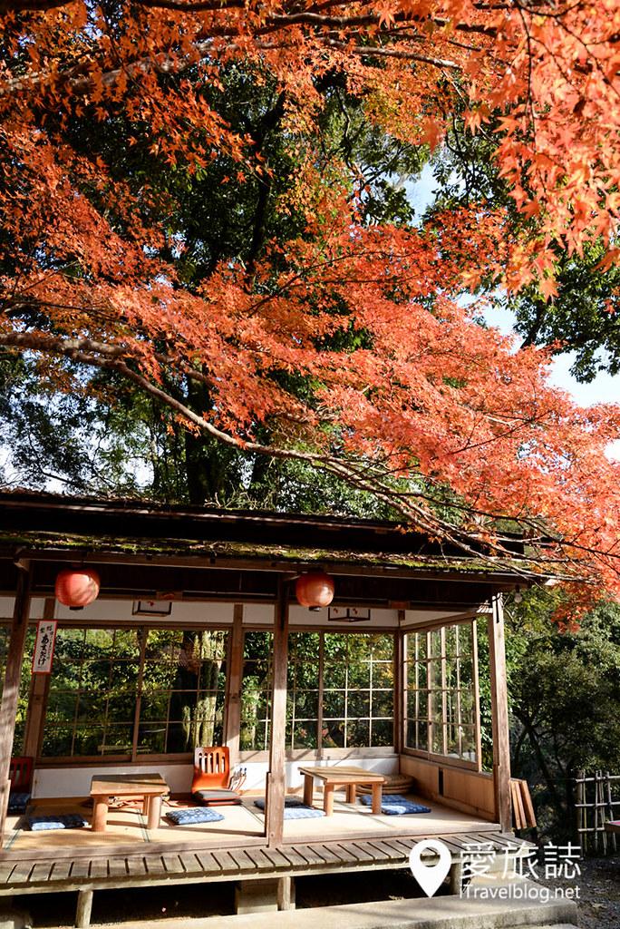 京都赏枫景点 神护寺 高雄茶屋 09