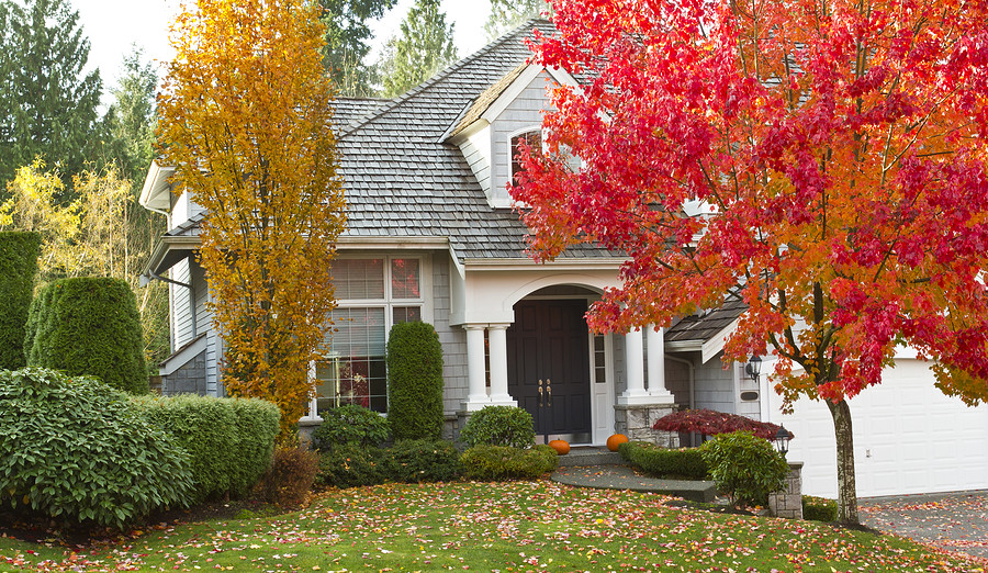 fall home blog
