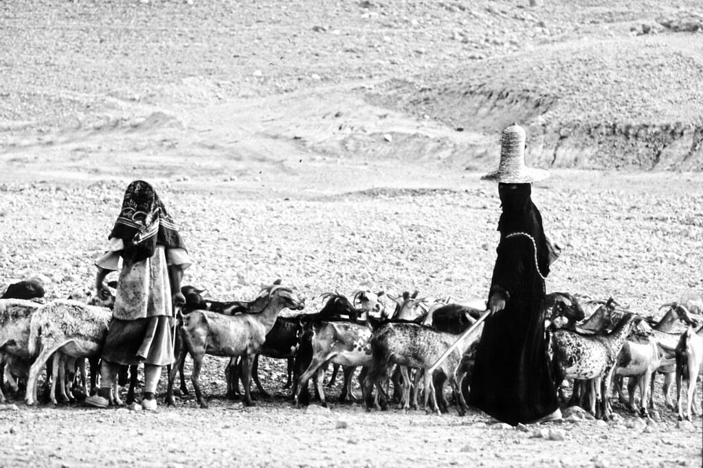 Donne pastore