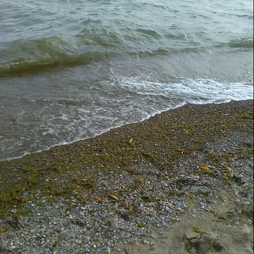 The eternal tide #toronto #lakeontario #torontoislands #beach #gibraltarpoint