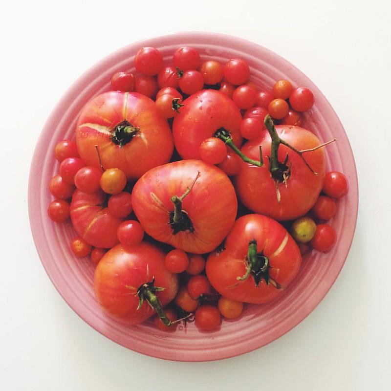 tomato love #cakiesgarden