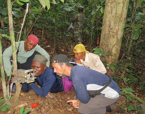 setting camera trap on E15 grid