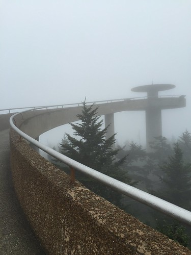 Clingman's Dome hike 7