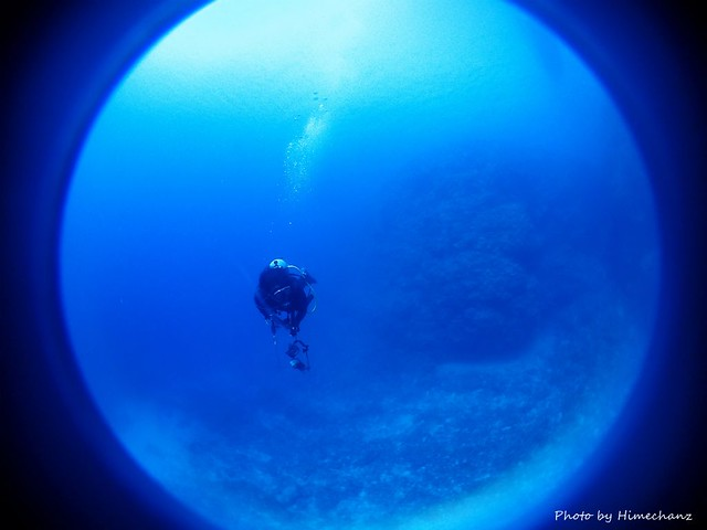 黒島ブルー、キレイでした♪