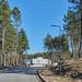 Parque Natura de Lamelas - Ribeira de Pena
