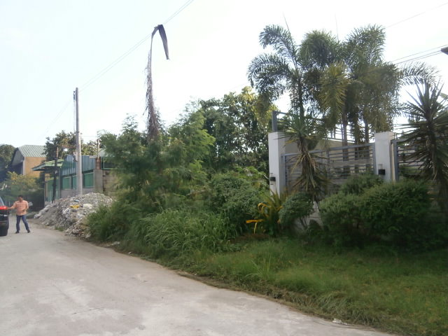 Lot for Sale San Fernando