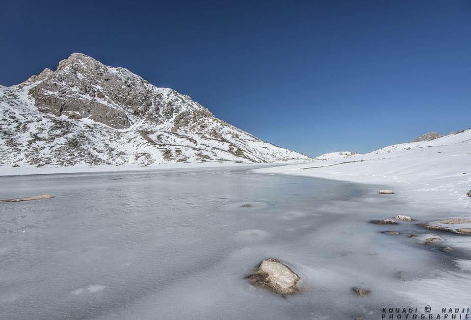 صور نادرة للطبيعة الجزائرية - صفحة 16 32190634735_97e66d9224_b