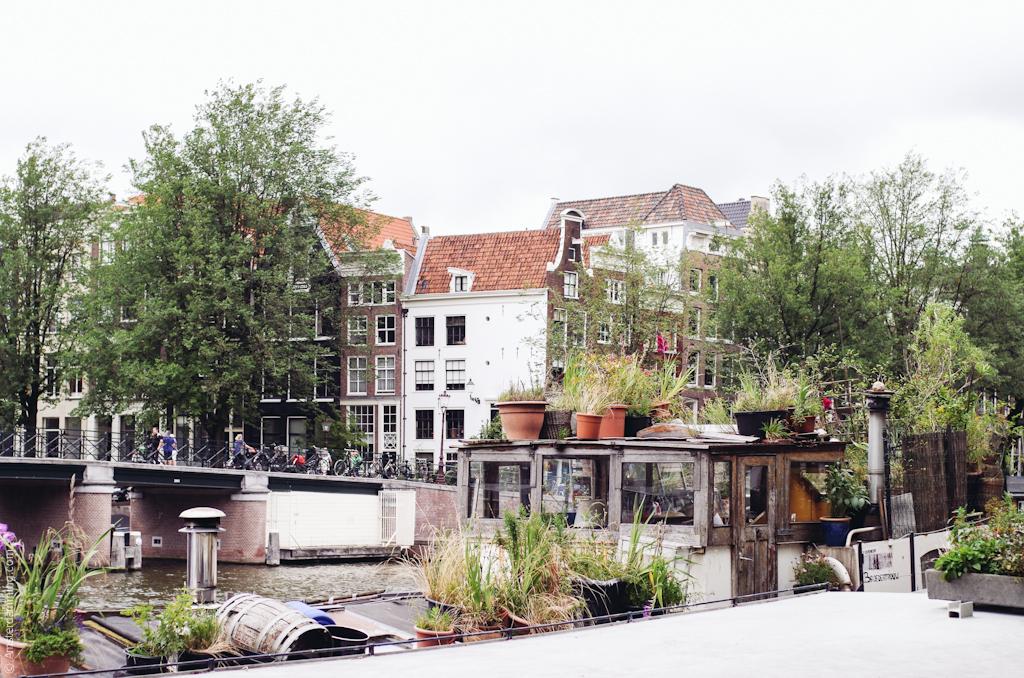 Amsterdam, Summer in Nieumarkt-Lastage