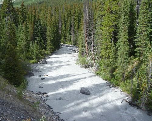 Nigel Creek, oh so white!