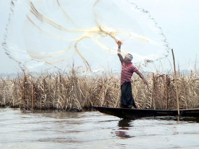 Fisherman Tosses his Net