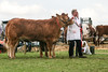 Hartington Wakes Show