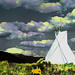 TeePee - 2nd Place Altered/Composite - Ken Papaleo