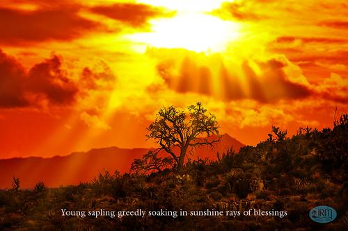 sunrise lasvegas roadtrip pahrump springmountain lovellcanyon