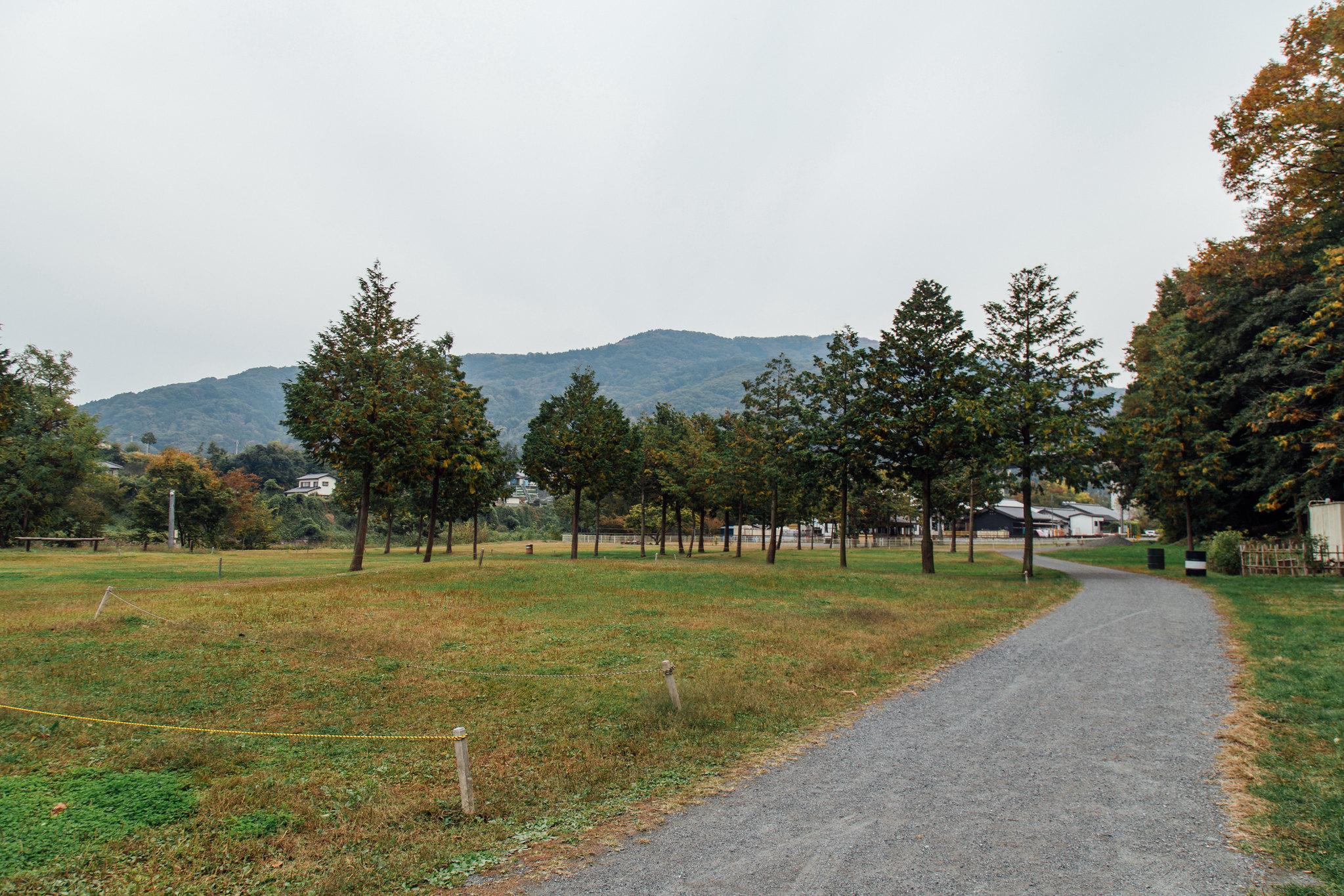 2014-10-31 秩父 001