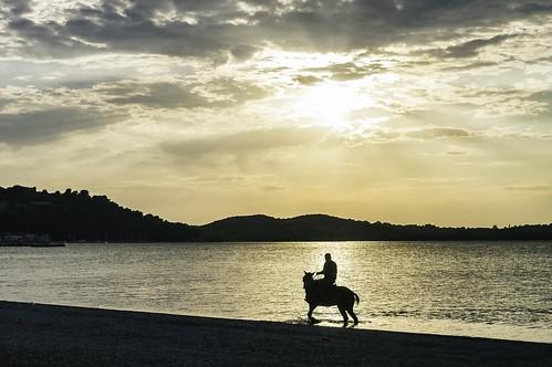 sunset sea horse man yellow greece riding gr rider ηλιοβασίλεμα άλογο θάλασσα κίτρινο vonista etoloakarnania άντρασ καβαλάρησ βόνιτσα αναβάτησ peloponnisosdytikielladakeio peloponnisosdytikielladakeionio ιππέασ ιππεύοντασ