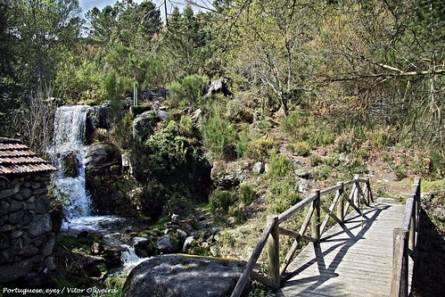 Bioparque - Parque Florestal do Pisão - Portugal