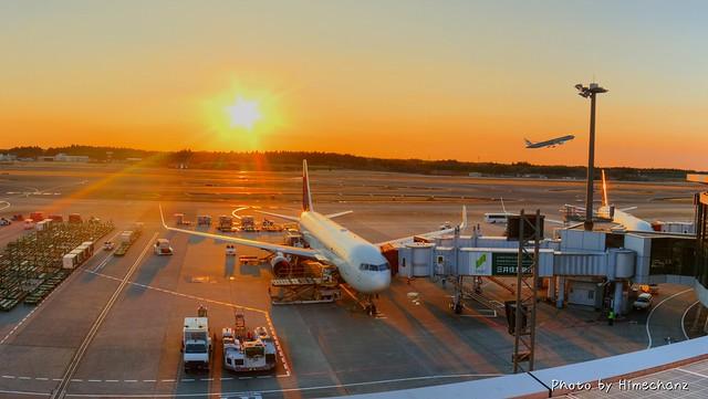 自分たちが乗る飛行機を事前にチェック♪ 夕日がキレイでした!