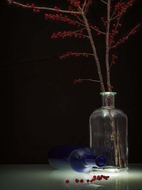 Una rama de acebo