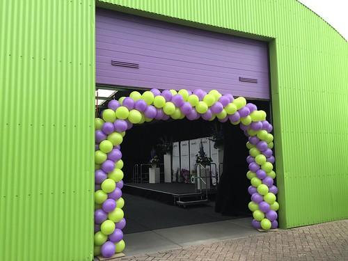Ballonboog 8m Reinis Spijkenisse