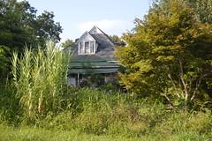 009 Abandoned House, Henning