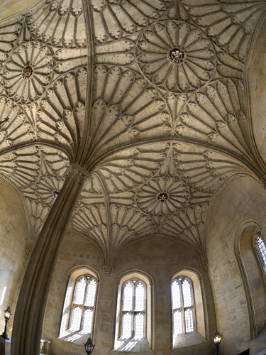 Fisheye view of a vaulted ceiling in Christ Church College, Oxford 5