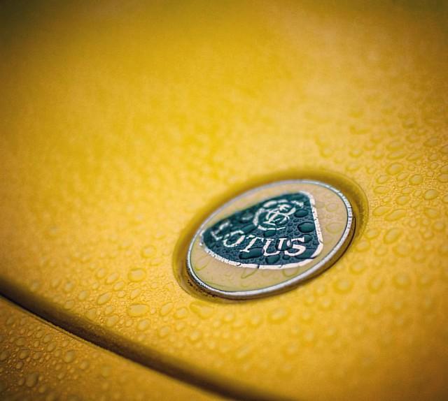 Image of Lotus