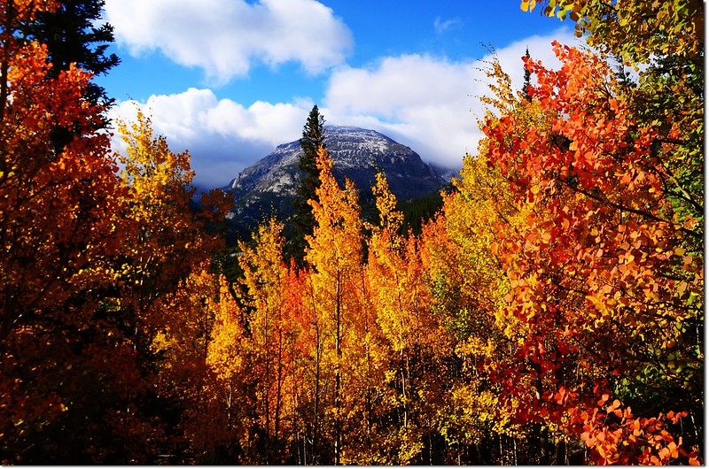 2015 Rockies in Fall, Bear Lake Area (5)