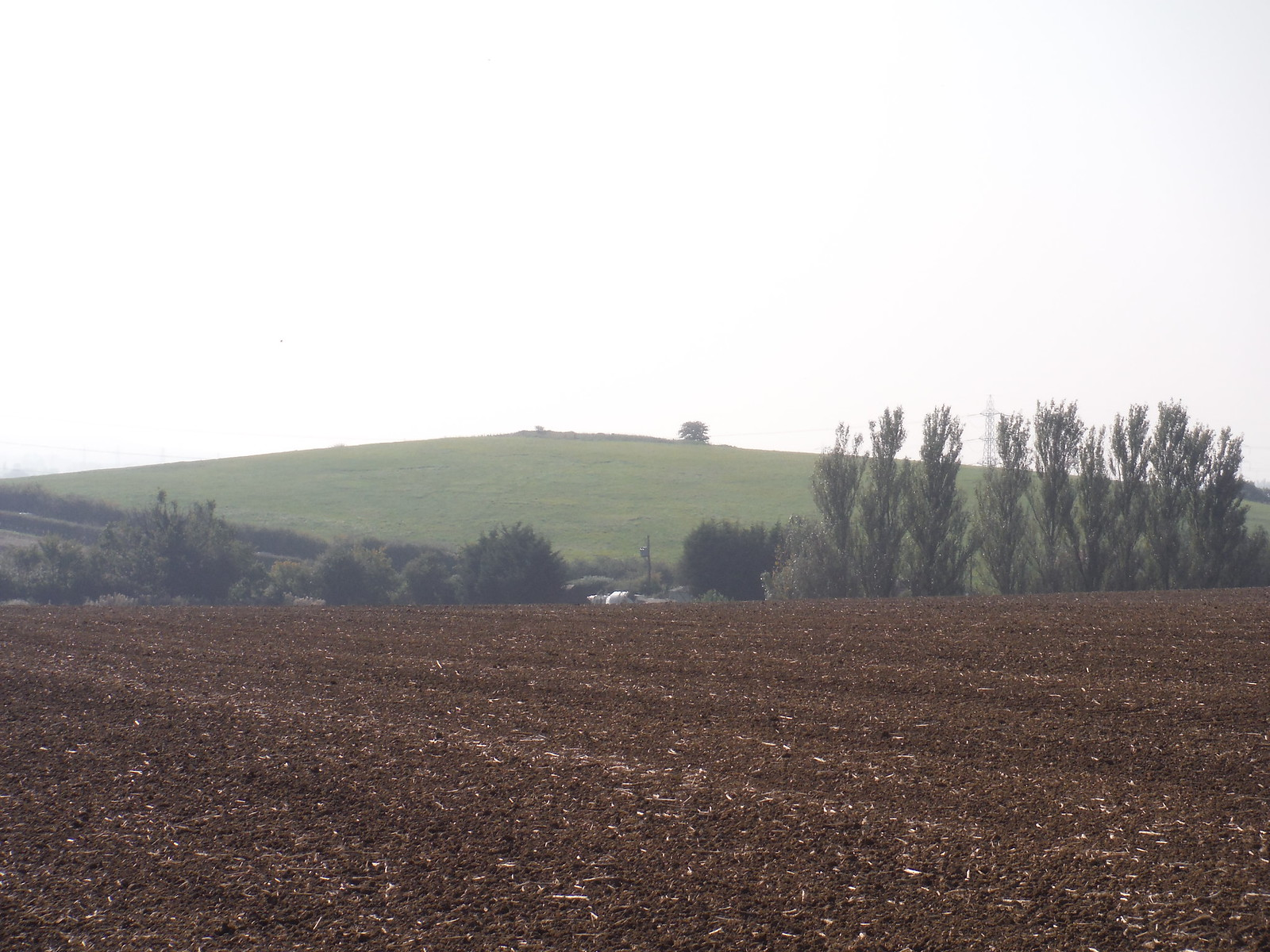 Mill Hill, Woodham Ferrers SWC Walk 159 South Woodham Ferrers to North Fambridge