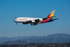 Asiana A380 approaches LAX.   Along with a bird.