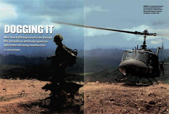 VIETNAM Magazine August 2010 - DOGGING IT