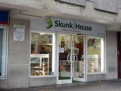 Picture of Skunk House, 213 High Street