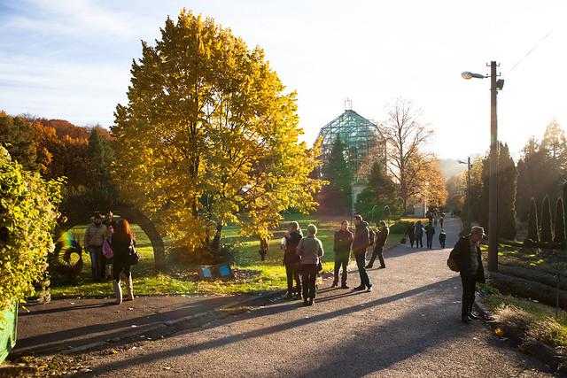 Botanical Garden. Lviv, Ukraine