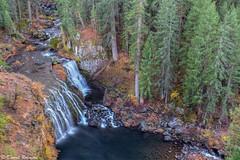 Autumn at Middle McCloud Falls