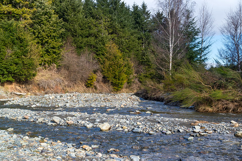 newzealand water pine river gold reserve nz southisland centralotago snowmelt goldmining freedomcamping germancreek kyeburndiggings danseyspassrd nearnaseby