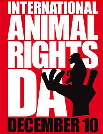 Animal-Rights-in-Iran33